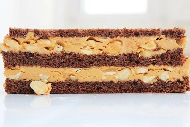 Шоколадный торт рецепт с фото со сгущенкой