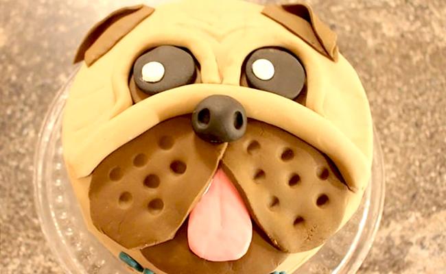 торт в виде собаки фото